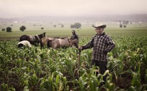 fermier-subventii