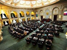 senat-604-bogdan-maran